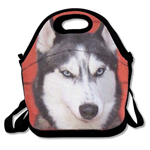 coleman backpack lunch box - 9
