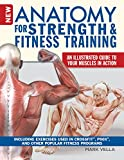 New Anatomy for Strength & Fitness Training: An