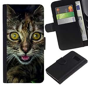 Planetar® Modelo colorido cuero carpeta tirón caso cubierta piel Holster Funda protección Para Samsung Galaxy S6 / SM-G920 ( Eyes Kitten Furry Whiskers Main Coon Black )
