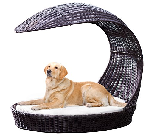 Outdoor Dog Chaise Bed N Espresso X Large