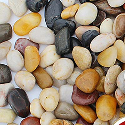 2 Pounds Decorative River Rock Stones Natural Polished Mixed Color Stones for Aquariums, Landscaping, Vase Fillers, Succulent, Tillandsia, Cactus pot?Home Decoration