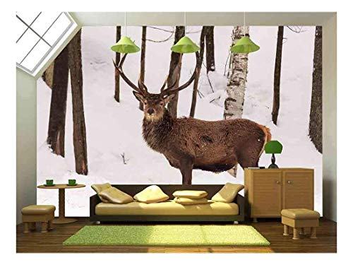 wall26 - Elk in The Woods - Removable Wall Mural | Self-Adhesive Large Wallpaper - 66x96 inches