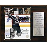 NHL Patrick Roy Colorado Avalanche Career Stat Plaque