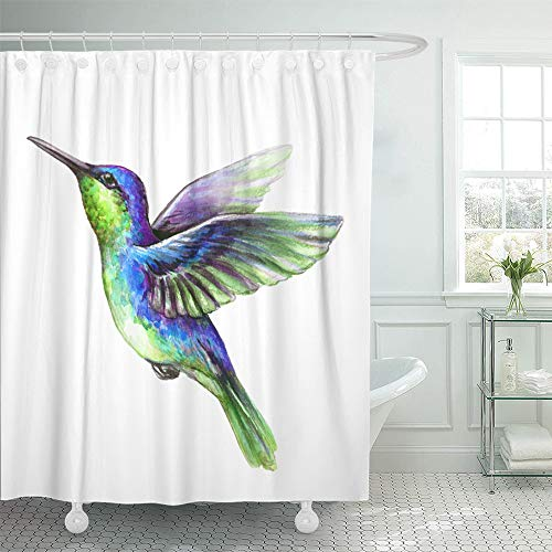 Emvency Shower Curtain Set Waterproof Adjustable Polyester Fabric Watercolor Flying Hummingbird Exotic Tropical Wild Life Clip 72 x 78 Inches Set with Hooks for Bathroom