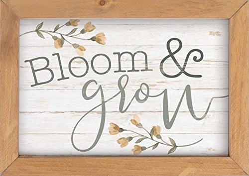 (P. GRAHAM DUNN Bloom & Grow Floral Whitewash Look 10 x 7 Inch Pine Wood Framed Wall Art Plaque)
