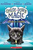 img - for Sticks & Stones (Upside-Down Magic #2) book / textbook / text book