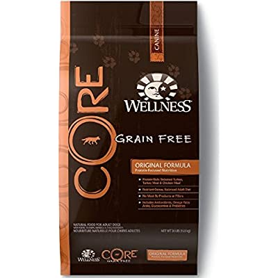 Wellness CORE Natural Grain Free Dry Dog Food - Original Recipe - 12lb