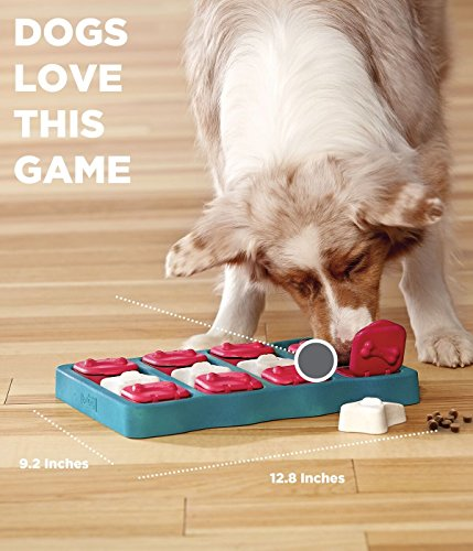 Nina Ottoson Dog Brick Treat Puzzle Dog Toy by Outward Hound