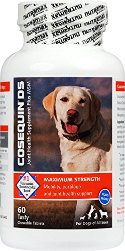 Nutramax Cosequin DS Chewables Plus MSM 60ct by Nutramax Laboratories