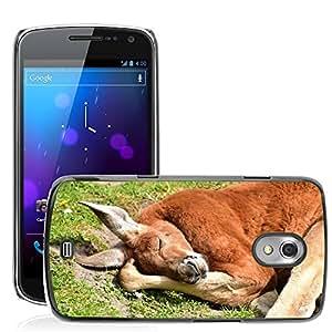 Super Stella Slim PC Hard Case Cover Skin Armor Shell Protection // M00147781 Kangaroos Red Kangaroo Mammals // Samsung Galaxy Nexus GT-i9250 i9250