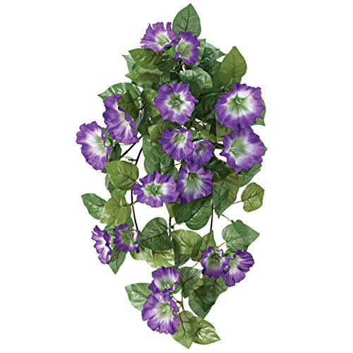 OakRidge Petunia Hanging Stem OutdoorTM