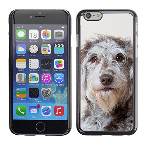 Premio Sottile Slim Cassa Custodia Case Cover Shell // F00011961 chien // Apple iPhone 6 6S 6G PLUS 5.5""