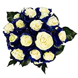 FRESH Tinted Roses| White and Blue| 25 stems (Mercury Rose) Magnaflor - XXL Blooms| Bunch| 10-12 days vase Life