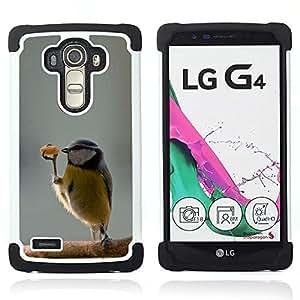 - funny cute bird dancer winter sweet/ H??brido 3in1 Deluxe Impreso duro Soft Alto Impacto caja de la armadura Defender - SHIMIN CAO - For LG G4 H815 H810 F500L
