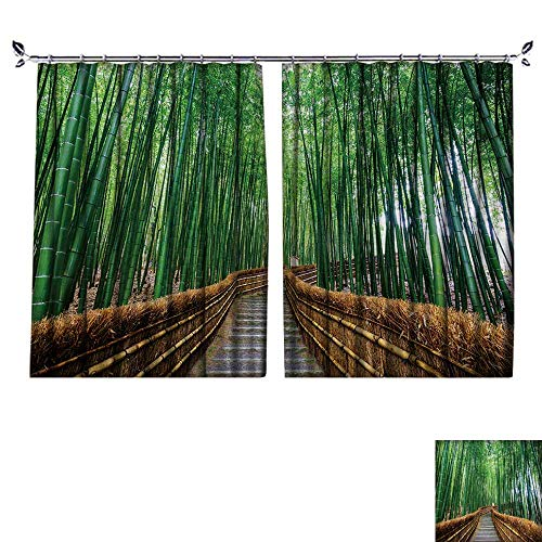DESPKON Decoration Polyester Material Path to Bamboo Forest,Arashiyama,Kyoto,Japan for Children's Room W84 x L72 ()