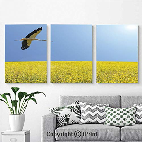 Modern Salon Theme Mural Alone Stork Flying in Clear Sky Over Spring Flowering Field Freedom Picture Painting Canvas Wall Art for Home Decor 24x36inches 3pcs/Set, Multicolor