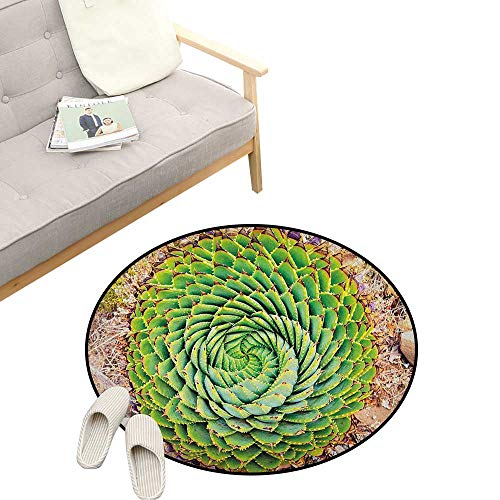 Plant Modern Flannel Microfiber ,National Flower of Lesotho South of Africa Aloe Polyphylla Spinning Spiral Aloe Vera, Round Rug Living Room Bedroom Decor 47