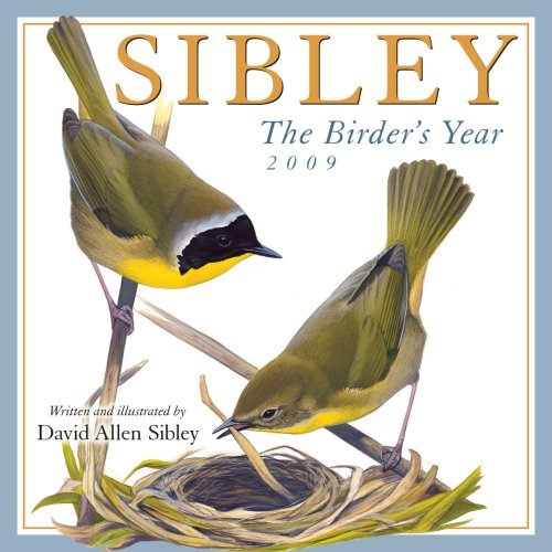 Year Wall Calendar 2009 (Sibley: The Birder's Year 2009 Wall Calendar (Calendar))