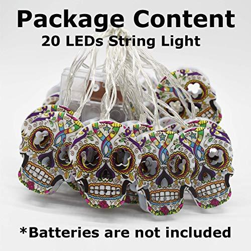 AIRERA Decorazioni di Halloween, 3 Metri e 20 luci a Stringa LED, Lanterna Teschio 2D Dipinta a Mano Colorata spettrale impermeabilizzata, lampade alimentate a Batteria AA per Interni Esterni