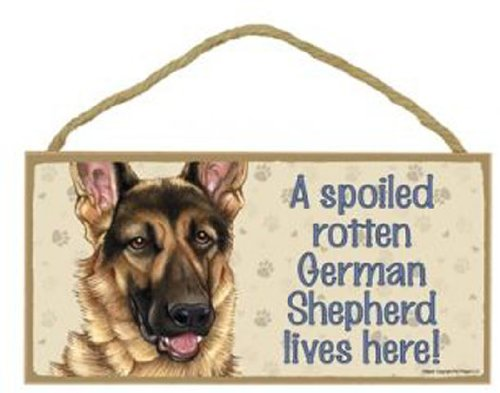 A Spoiled Rotten German Shepherd Lives Here - 5