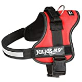 Julius-K9 Harness with Extra premade Labels