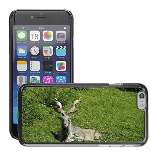 """Bild Hart Handy Schwarz Schutz Case Cover Schale Etui // M00133694 Steinbock Steinbock Alpen Bedenken // Apple iPhone 6 PLUS 5.5"""""""