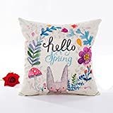 Weiliru Easter Cotton Lien Decor Throw Pillow Cover Kinds of Color Pattern Pillow Case