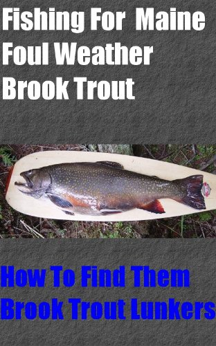 Fishing For Maine Foul Weather Brook Trout (Best Bait For Brook Trout)