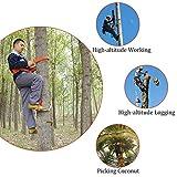 Ibnotuiy Tree Climbing Spikes, Adjustable