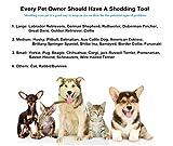 Nwell Pets Dog and Cat Brush for Shedding Medium