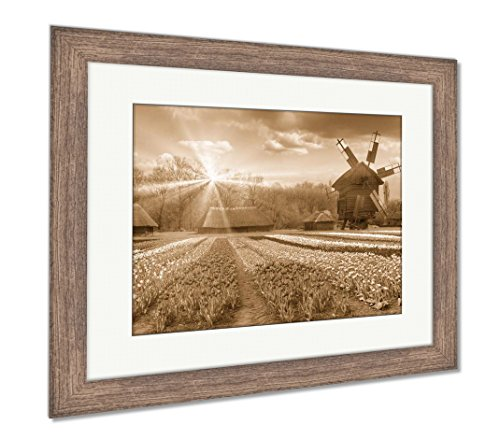 Fields of Tulips in Village, Wall Art Home Decoration, Sepia, 26x30 (Frame Size), Rustic Barn Wood Frame, AG5997697 ()