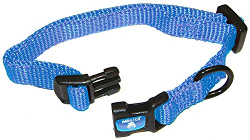 "Hamilton 3/8"" Adjustable Dog Collar, Extra Small, Fits 7""-12"", Berry Blue"