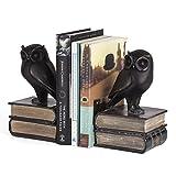 Danya B. DS780 Decorative Rustic Bookshelf Decor - Owl on Books Bookend Set - Bronze