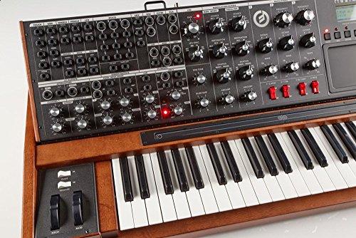 Moog Minimoog Voyager XL - Buy Online in UAE  | Musical Instruments