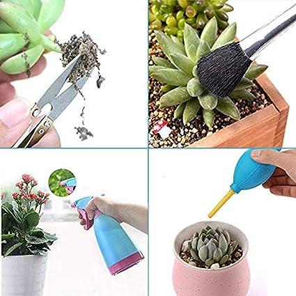 Mini-Gartenpflanzwerkzeug-Set RENNICOCO 14-TLG Gartenhandwerkzeuge f/ür die Sukkulentenpflege oder die Pflege von Mini-Gartenpflanzen im Innenbereich