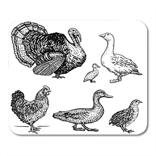 Semtomn Gaming Mouse Pad Poultry Goose Rooster Chicken Turkey Duck Quail Series 9.5
