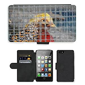 Super Stella Cell Phone Card Slot PU Leather Wallet Case // M00147460 Cage Grid Caught Zoo Animal Bird // Apple iPhone 4 4S 4G
