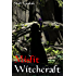 Misfit Witchcraft (Misfits Book 2)
