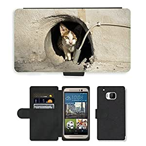 Super Stella Cell Phone Card Slot PU Leather Wallet Case // M00104413 Stray Cat Cat Greece Animal // HTC One M9