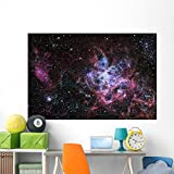 Tarantula Nebula Star Forming Wall Mural by Wallmonkeys Peel and Stick Graphic (72 in W x 48 in H) WM58704