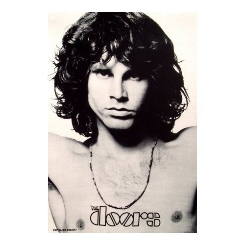 The 10 best the doors poster jim morrison 2020