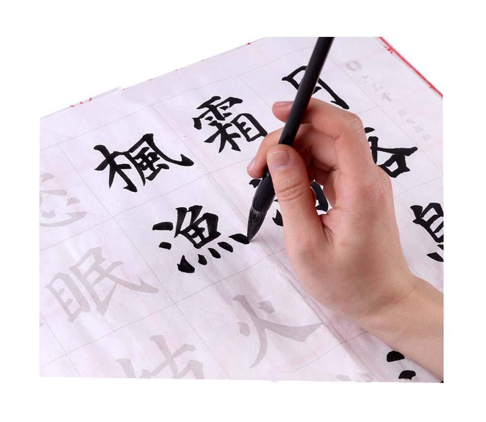 ヤンツェンクシング中国クラシックブラシコピーブック、Lushan Waterfall、10CS B07GKY19XN