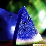 10PCS Blue Watermelon Seeds Vegetable Organic Home Garden New Variety Plant