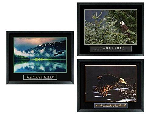 3 Framed Leadership Leaders Bald Eagle Nature Birds Framed Motivational Posters -