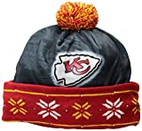 FOCO NFL Unisex Big Logo Light Up Printed Beanie