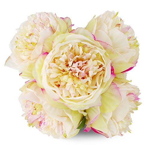 Silk Peony Bouquet 5 Heads Champagne SOLEDI Artificial Fake Flower Bunch Bouquet Bridal Bouquet Wedding Living Room Table Home Garden Decoration (Stem Peony)