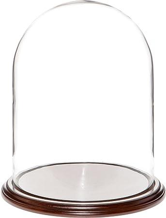 Plymor Brand 11.75 x 15 Glass Display Dome Cloche Dark Mahogany Veneer Base