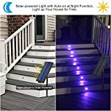 SL Deck Lights