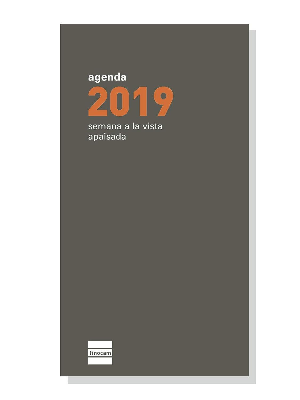 Finocam 341140019 - Recambio anual 2019: Amazon.es: Oficina ...