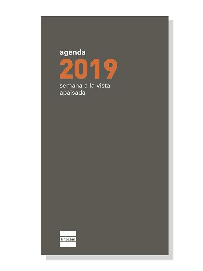 Finocam 341240019 - Recambio anual 2019: Amazon.es: Oficina ...